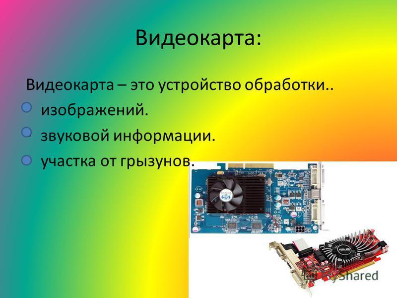 Видеокарта: Видеокарта – это устройство обработки.. изображений. звуковой информации. участка от грызунов.