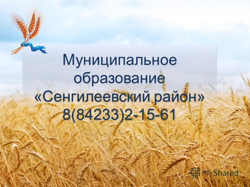 Муниципальное образование «Сенгилеевский район» 8(84233)2-15-61