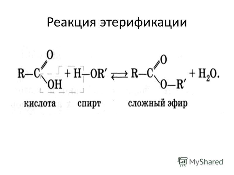 Реакция этерификации
