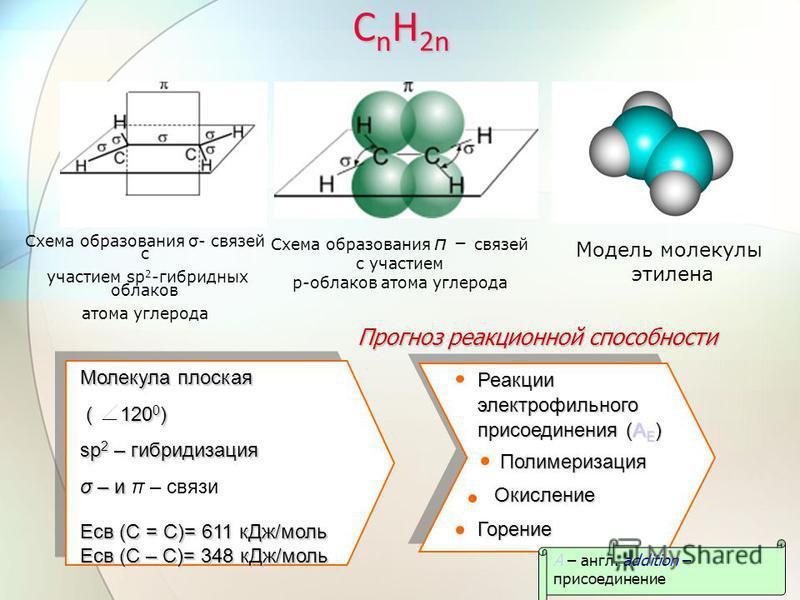 С n H 2n Схема образования σ- связей с участием sp 2 -гибридных облаков атома углерода Схема образования π – связей с участием p-облаков атома углерода Модель молекулы этилена Реакции электрофильного присоединения (A E ) Полимеризация Полимеризация О