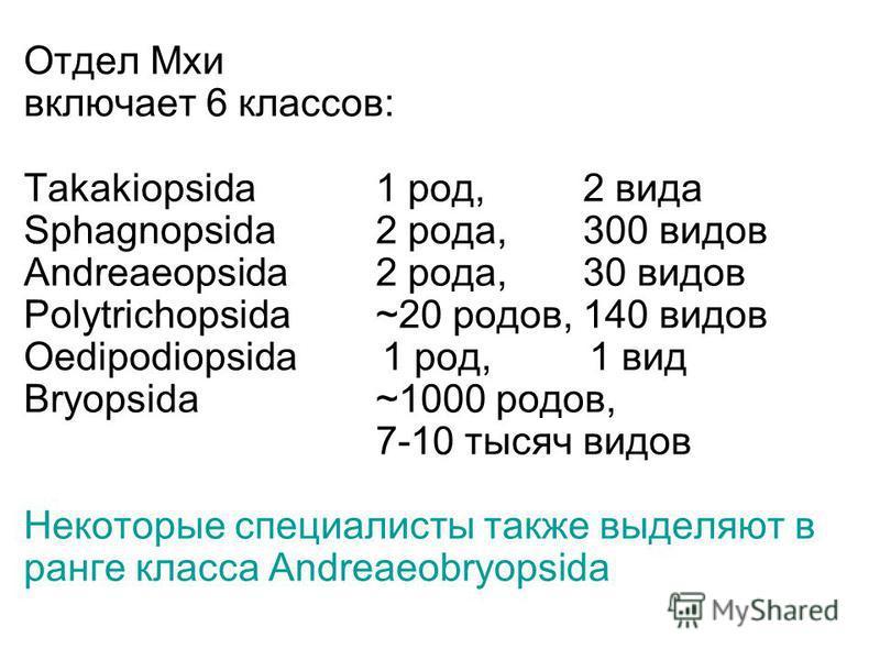 Отдел Мхи включает 6 классов: Takakiopsida1 род, 2 вида Sphagnopsida2 рода, 300 видов Andreaeopsida2 рода, 30 видов Polytrichopsida ~20 родов, 140 видов Oedipodiopsida 1 род, 1 вид Bryopsida~1000 родов, 7-10 тысяч видов Некоторые специалисты также вы