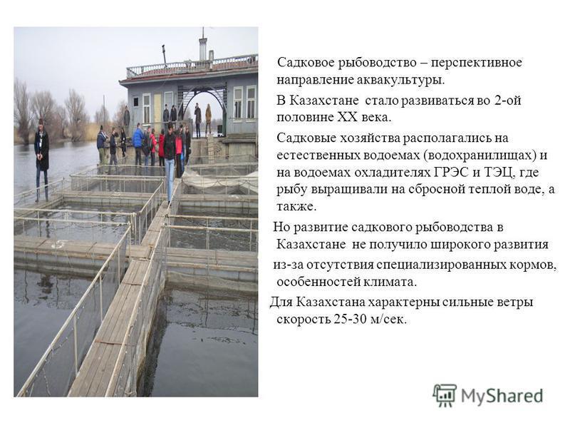 Садковое рыбоводство – перспективное направление аквакультуры. В Казахстане стало развиваться во 2-ой половине ХХ века. Садковые хозяйства располагались на естественных водоемах (водохранилищах) и на водоемах охладителях ГРЭС и ТЭЦ, где рыбу выращива