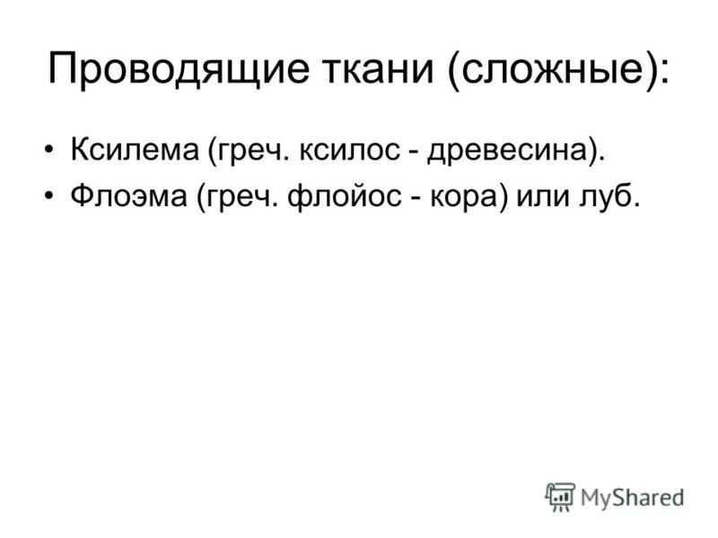 Проводящие ткани (сложные): Ксилема (греч. ксилос - древесина). Флоэма (греч. флойос - кора) или луб.