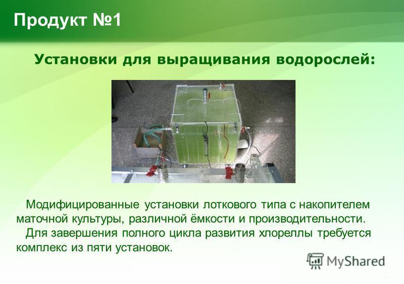 Выращивания водорослей 31