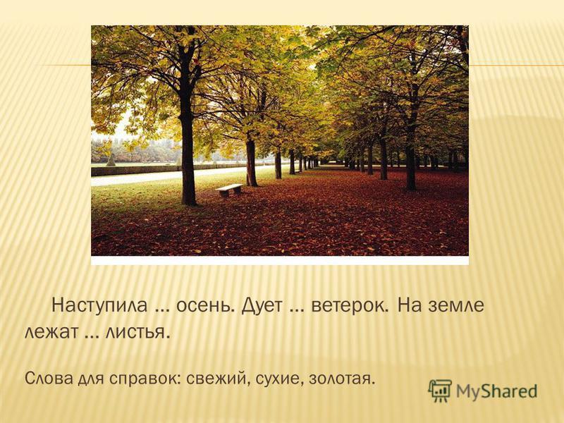 Наступила … осень. Дует … ветерок. На земле лежат … листья. Слова для справок: свежий, сухие, золотая.