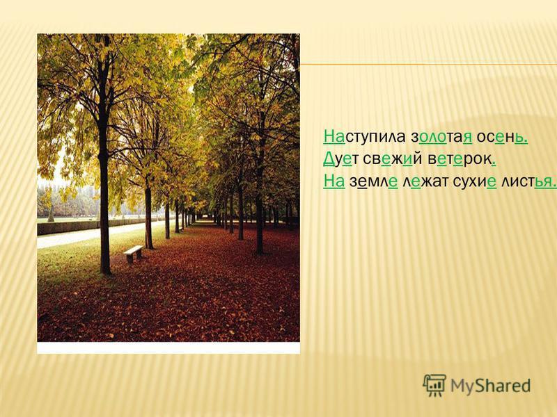 Наступила золотая осень. Дует свежий ветерок. На земле лежат сухие листья.