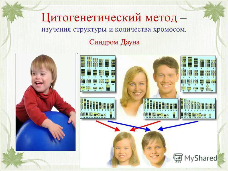 Цитогенетический метод – изучения структуры и количества хромосом. Синдром Дауна