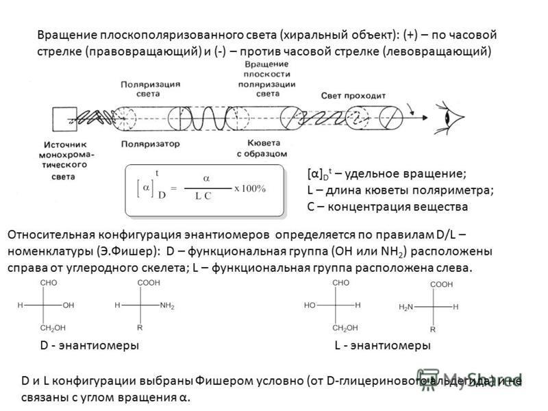 Вращение плоскополяризованного света (хиральный объект): (+) – по часовой стрелке (правовращающий) и (-) – против часовой стрелке (левовращающий) Относительная конфигурация энантиомеров определяется по правилам D/L – номенклатуры (Э.Фишер): D – функц