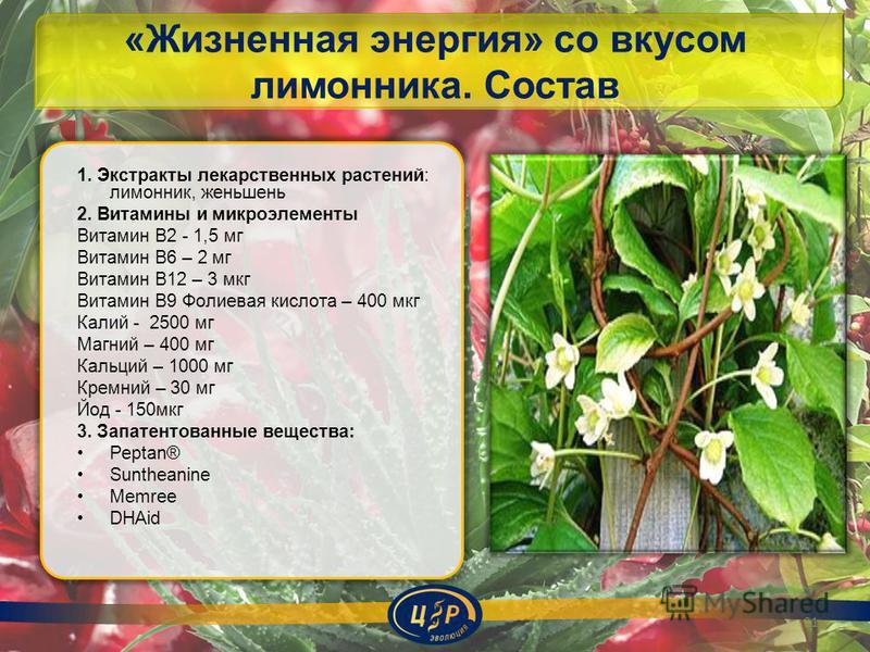 «Жизненная энергия» со вкусом лимонника. Состав 1. Экстракты лекарственных растений: лимонник, женьшень 2. Витамины и микроэлементы Витамин В2 - 1,5 мг Витамин В6 – 2 мг Витамин В12 – 3 мкг Витамин В9 Фолиевая кислота – 400 мкг Калий - 2500 мг Магний