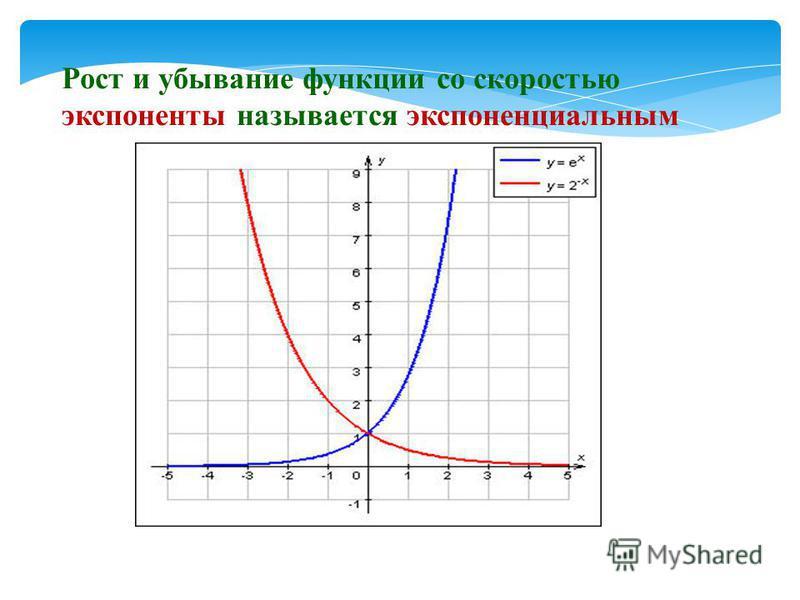 Рост и убывание функции со скоростью экспоненты называется экспоненциальным
