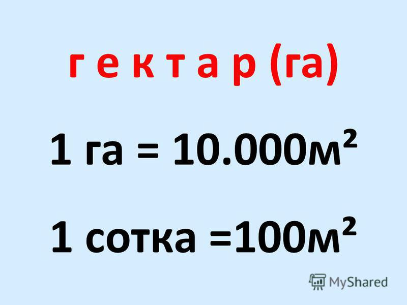 г е к т а р (га) 1 га = 10.000 м² 1 сотка =100 м²