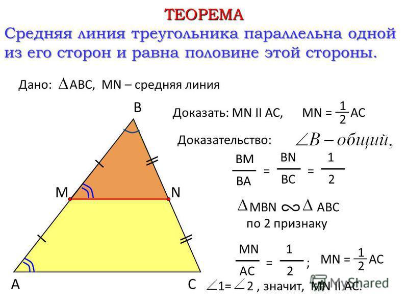 ТЕОРЕМА Средняя линия треугольника параллельна одной из его сторон и равна половине этой стороны. Доказательство: Дано:ABC, МN – средняя линия Доказать: МN II АС,MN = АС 1 2 А B C М N BM BA = BN BC = 1 2 MBN ABC по 2 признаку MN AC = ; 1 2 MN = АС 1