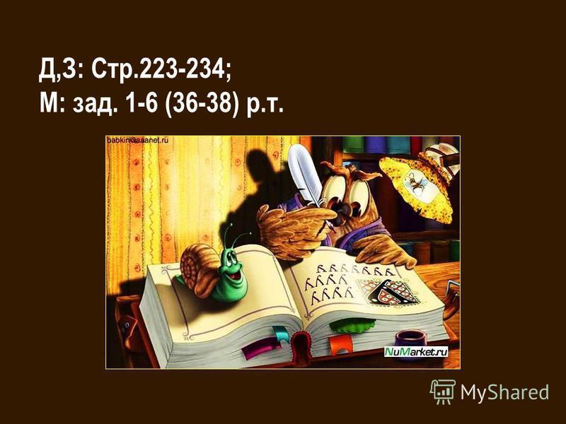 Д,З: Стр.223-234; М: зад. 1-6 (36-38) р.т.