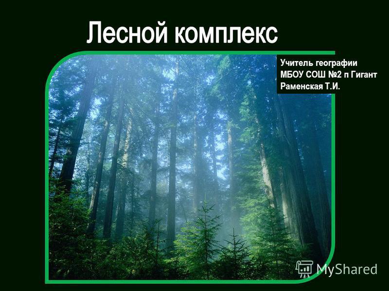 Учитель географии МБОУ СОШ 2 п Гигант Раменская Т.И.