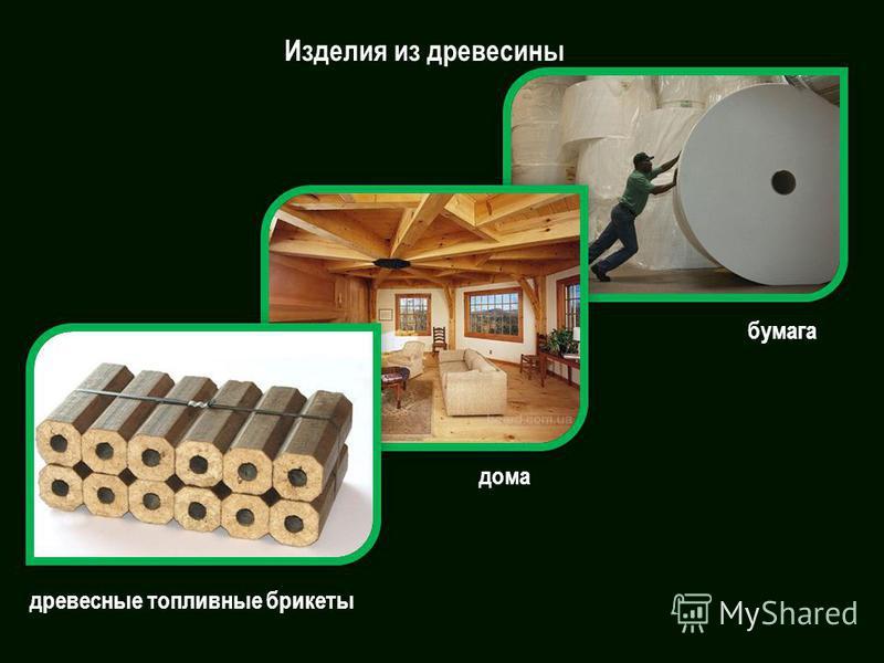 Изделия из древесины бумага дома древесные топливные брикеты