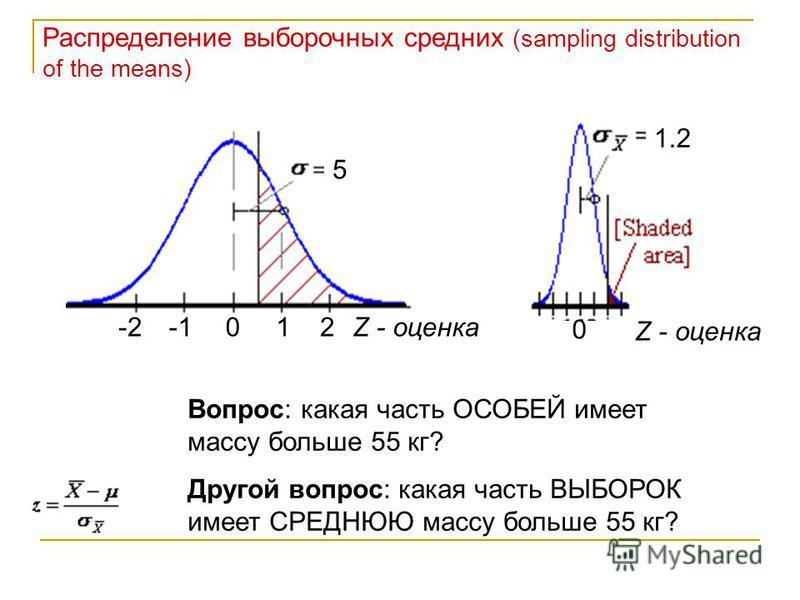 Распределение выборочных средних (sampling distribution of the means) 0 5 12-2Z - оценка 0 1.2 Z - оценка Вопрос: какая часть ОСОБЕЙ имеет массу больше 55 кг? Другой вопрос: какая часть ВЫБОРОК имеет СРЕДНЮЮ массу больше 55 кг?