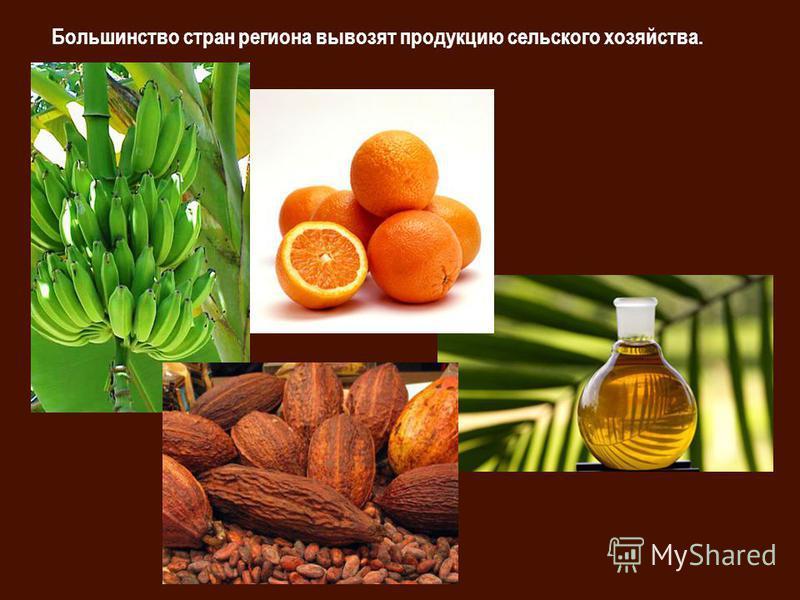 Большинство стран региона вывозят продукцию сельского хозяйства.