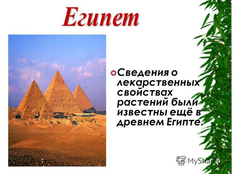 Сведения о лекарственных свойствах растений были известны ещё в древнем Египте.