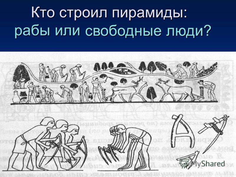 Кто строил пирамиды: рабы или Кто строил пирамиды: рабы или свободные люди?