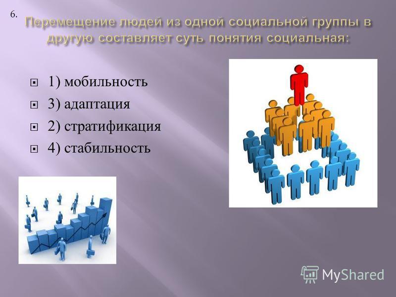 1) мобильность 3) адаптация 2) стратификация 4) стабильность 6.