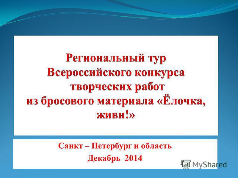Санкт – Петербург и область Декабрь 2014
