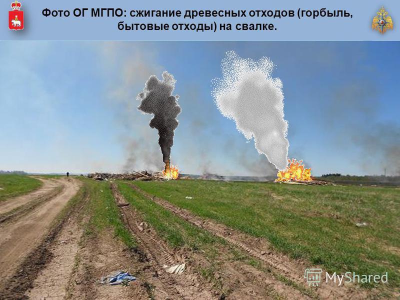 Фото ОГ МГПО: сжигание древесных отходов (горбыль, бытовые отходы) на свалке.