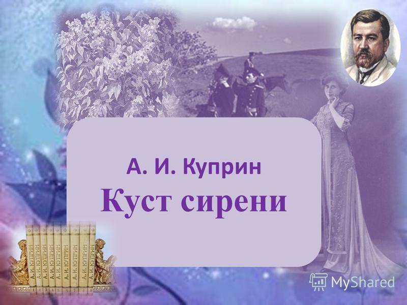 А. И. Куприн Куст сирени