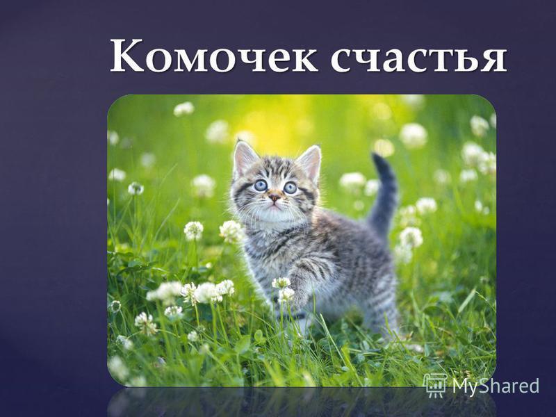 { Комочек счастья