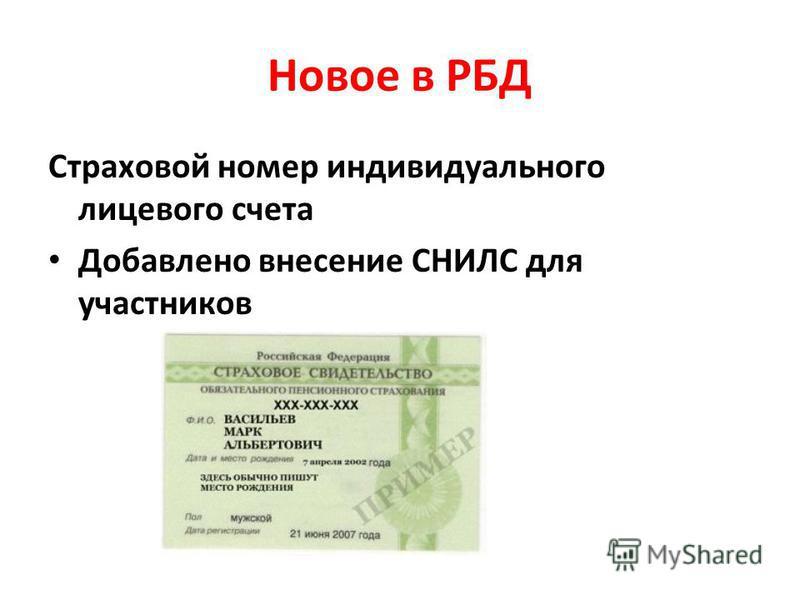 Новое в РБД Страховой номер индивидуального лицевого счета Добавлено внесение СНИЛС для участников