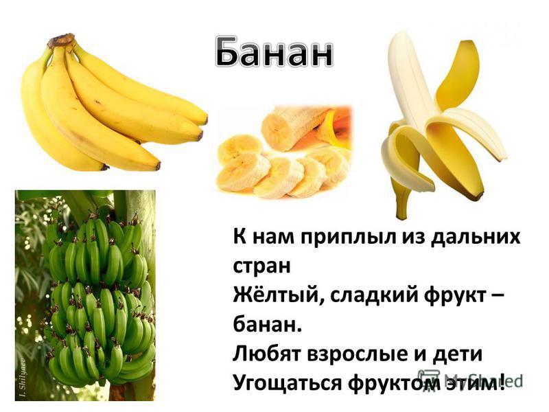 К нам приплыл из дальних стран Жёлтый, сладкий фрукт – банан. Любят взрослые и дети Угощаться фруктом этим!