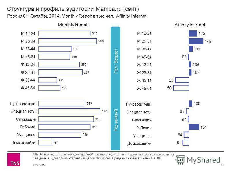 ©TNS 2014 Структура и профиль аудитории Mamba.ru (сайт) 18 Affinity Internet: отношение доли целевой группы в аудитории интернет-проекта за месяц (в %) к ее доле в аудитории Интернета в целом 12-64 лет. Среднее значение индекса = 100. Россия 0+, Октя