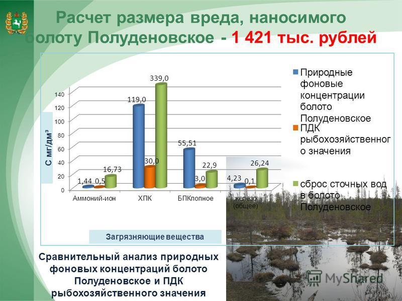 Расчет размера вреда, наносимого болоту Полуденовское - 1 421 тыс. рублей 12 Сравнительный анализ природных фоновых концентраций болото Полуденовское и ПДК рыбохозяйственного значения
