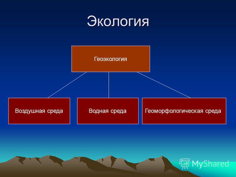 Экология Геоэкология Воздушная среда Водная среда Геоморфологическая среда