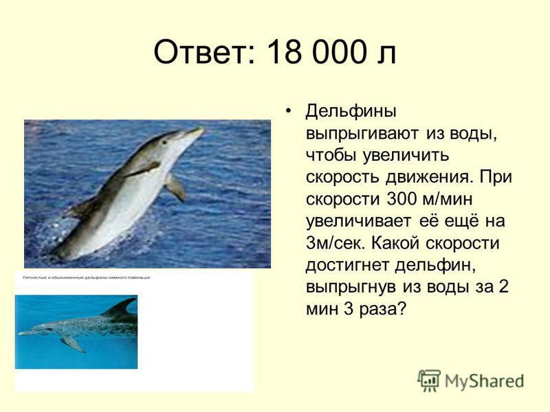 Ответ: 18 000 л Дельфины выпрыгивают из воды, чтобы увеличить скорость движения. При скорости 300 м/мин увеличивает её ещё на 3 м/сек. Какой скорости достигнет дельфин, выпрыгнув из воды за 2 мин 3 раза?