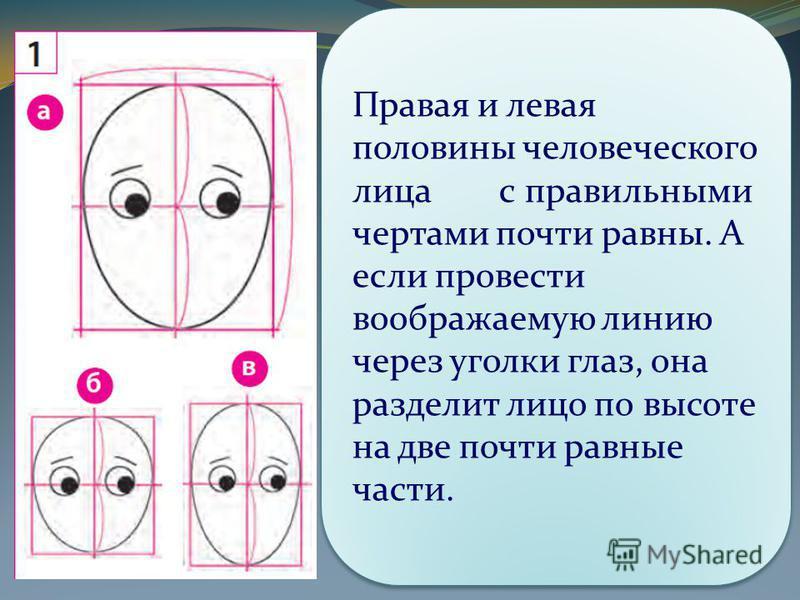 Правая и левая половины человеческого лица с правильными чертами почти равны. А если провести воображаемую линию через уголки глаз, она разделит лицо по высоте на две почти равные части.