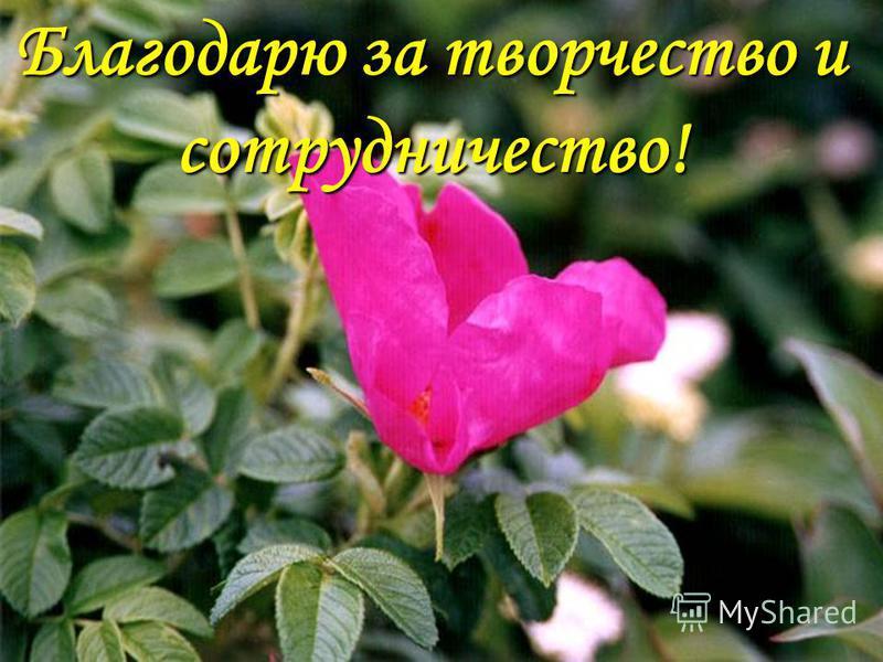 Благодарю за творчество и сотрудничество! С уважением, Мусна Татяна Анатольевна Благодарю за творчество и сотрудничество!