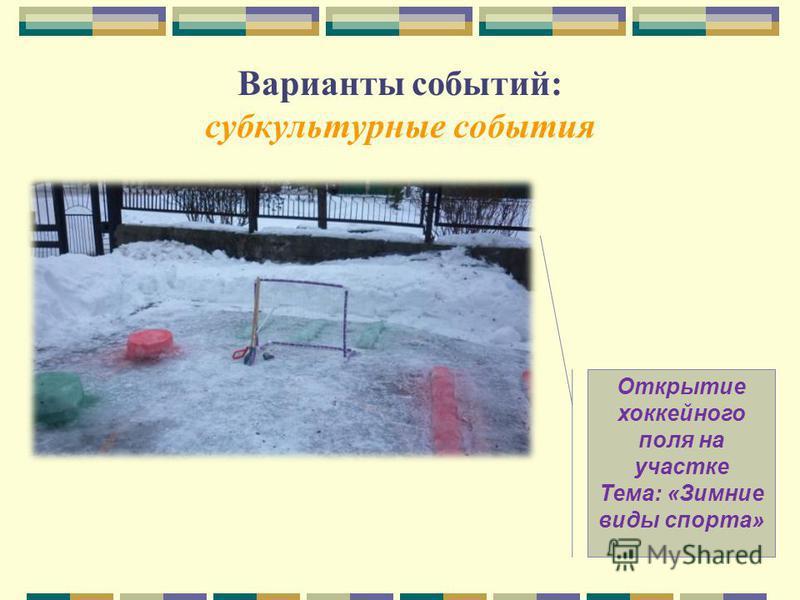 Варианты событий: субкультурные события Открытие хоккейного поля на участке Тема: «Зимние виды спорта»