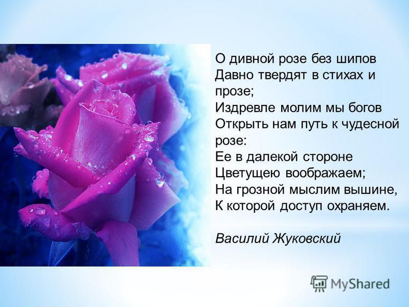 О дивной розе без шипов Давно твердят в стихах и прозе; Издревле молим мы богов Открыть нам путь к чудесной розе: Ее в далекой стороне Цветущею воображаем; На грозной мыслим вышине, К которой доступ охраняем. Василий Жуковский