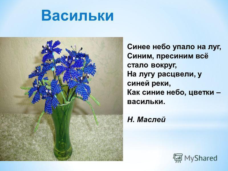 Синее небо упало на луг, Синим, пресиним всё стало вокруг, На лугу расцвели, у синей реки, Как синие небо, цветки – васильки. Н. Маслей Васильки