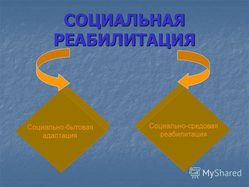 СОЦИАЛЬНАЯ РЕАБИЛИТАЦИЯ Социально-бытовая адаптация Социально-средовая реабилитация