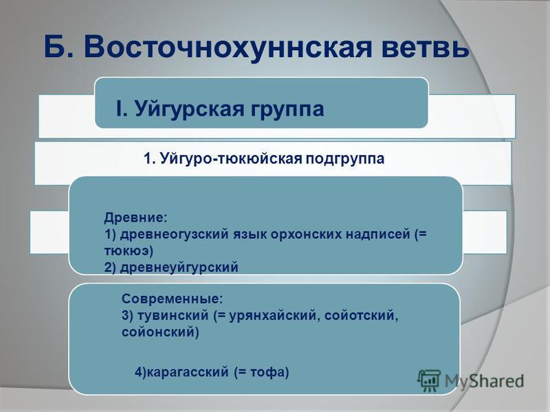 Б. Восточнохуннская ветвь I. Уйгурская группа 1. Уйгуро-тюкюйская подгруппа Древние: 1) древнеогузский язык орхонских надписей (= тюкюэ) 2) древнеуйгурский Современные: 3) тувинский (= урянхайский, сойотский, солонский) 4)карагайский (= тофа)