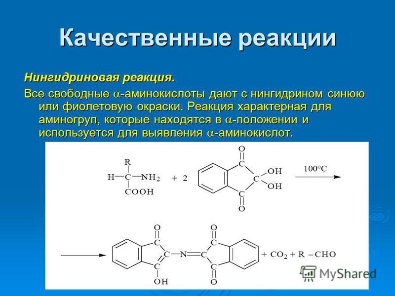 Качественные реакции Нингидриновая реакция. Все свободные -аминокислоты дают с нингидрином синюю или фиолетовую окраски. Реакция характерная для аминогрупп, которые находятся в -положении и используется для выявления -аминокислот.