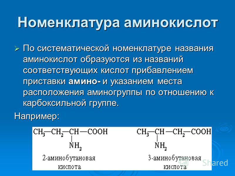 Номенклатура аминокислот По систематической номенклатуре названия аминокислот образуются из названий соответствующих кислот прибавлением приставки амино- и указанием места расположения аминогрупппы по отношению к карбоксильной группе. По систематичес