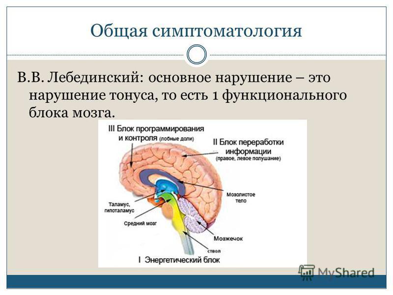 Общая симптоматология В.В. Лебединский: основное нарушение – это нарушение тонуса, то есть 1 функционального блока мозга.