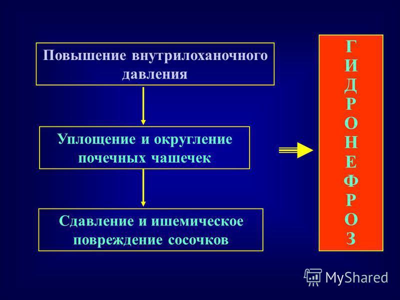 Повышение внутрилоханочного давления Уплощение и округление почечных чашечек ГИДРОНЕФРОЗГИДРОНЕФРОЗ Сдавление и ишемическое повреждение сосочков