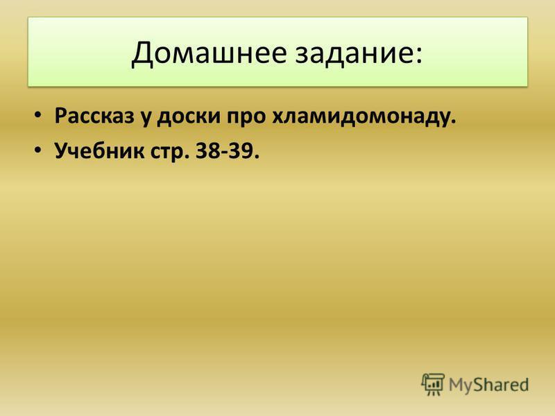 Домашнее задание: Рассказ у доски про хламидомонаду. Учебник стр. 38-39.