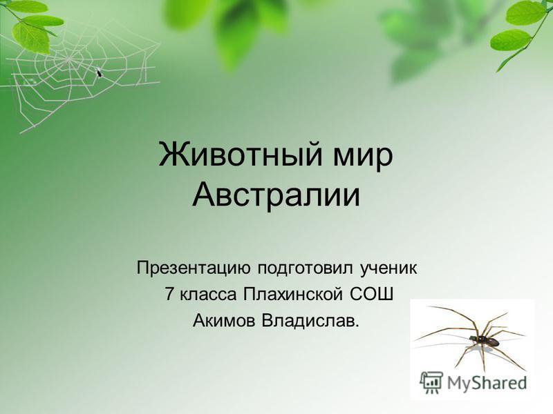 Животный мир Австралии Презентацию подготовил ученик 7 класса Плахинской СОШ Акимов Владислав.