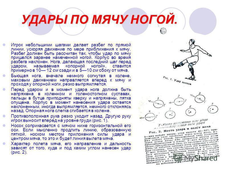 УДАРЫ ПО МЯЧУ НОГОЙ. Игрок небольшими шагами делает разбег по прямой линии, ускоряя движение по мере приближения к мячу. Разбег должен быть рассчитан так, чтобы удар по мячу пришелся заранее намеченной ногой. Корпус во время разбега наклонен. Нога, д