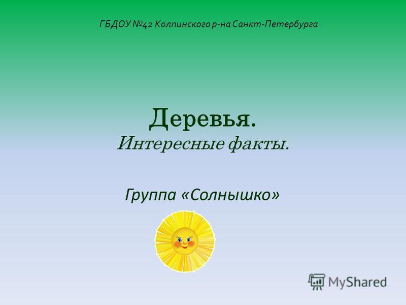 Группа «Солнышко» Деревья. Интересные факты. ГБДОУ 42 Колпинского р-на Санкт-Петербурга