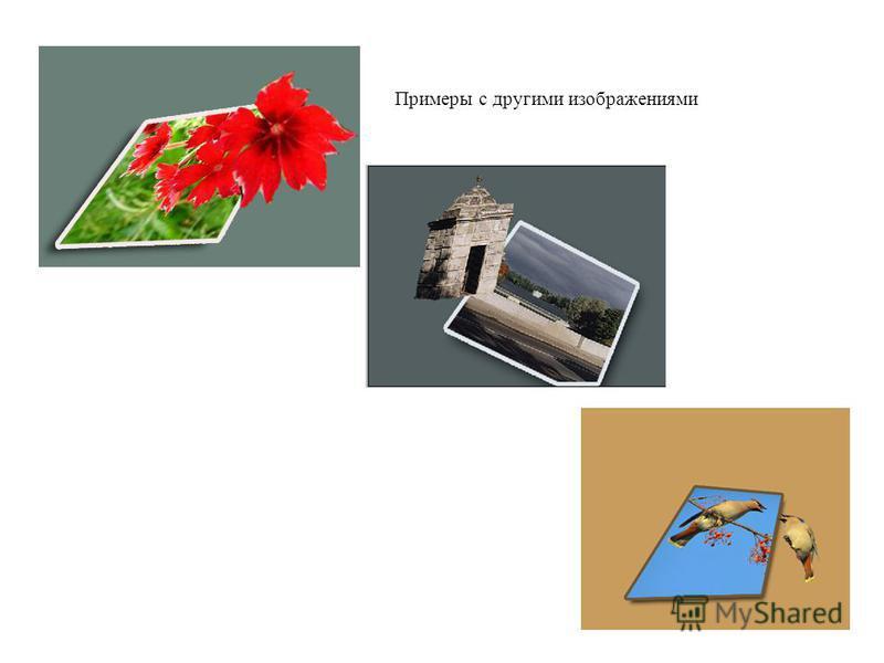 Примеры с другими изображениями